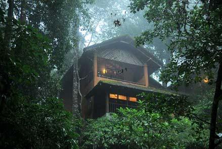 Wayanad hotels