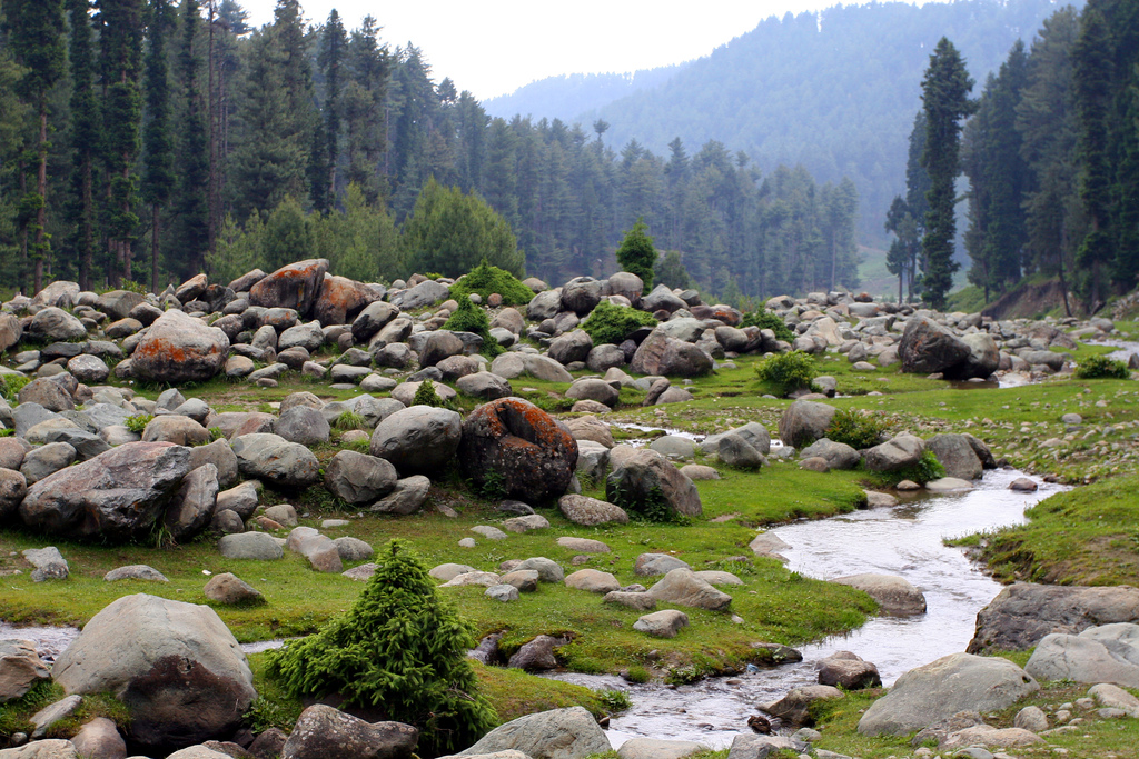 Jammu and Kashmir hotels